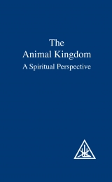 The Animal Kingdom, A Spiritual Perspective - Image