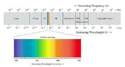 [Figure1: Spectrum, visible light]